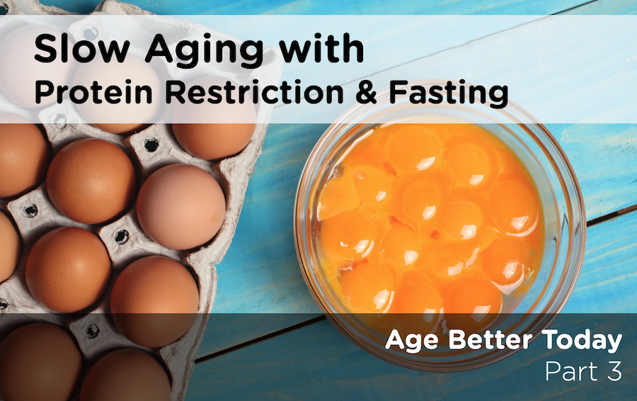 Aging Protein Restriction2